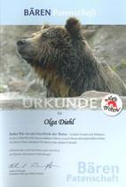 4 Pfoten Tierpatenschaft Bär